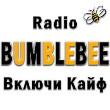 Radio BumbleBee